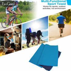 Toko Esogoal Handuk Pendingin Instan Pendinginan Dingin Handuk Dingin Untuk Olahraga Latihan Fitness Gym Yoga Pilates Travel Camping Lainnya Biru Intl Esogoal