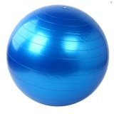 Harga Gym Ball Bola Senam Free Pompa Biru New