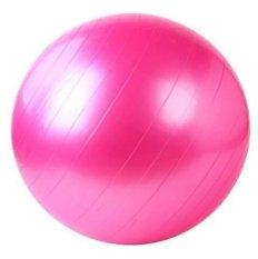 Harga Gym Ball Bola Senam Free Pompa Pink Yang Murah