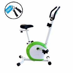 Beli Idachi Sepeda Magnetik Bike Id 420B White Green Idachi Murah