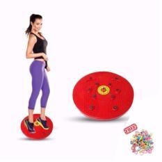 JBS Jogging Body Plate - Piringan Jogging Badan Magnetic Trimmer / 1Pcs + Free Ikat Rambut Polkadop