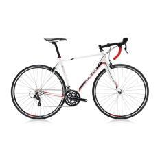 Polygon Sepeda Balap Helious C3 700C - Putih - Gratis Ongkir & Perakitan