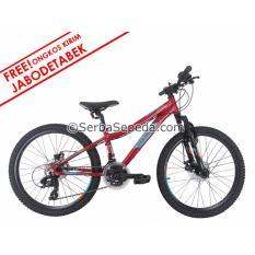 Polygon Sepeda MTB 24