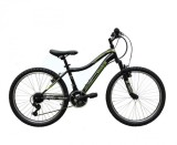 Harga Reebok Sepeda Mtb 24 Inch Chameleon Green Asli Reebok