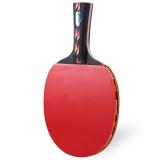 Spesifikasi Regail D003 Tenis Meja Ping Pong Raket Satu Jabat Tangan Memegang Bat Memukul Bola Merah Terbaik