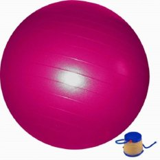 Harga S2 Kn Gym Ball With Pump Pink S2 Terbaik