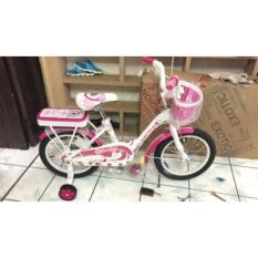 Sepeda Anak 16 Wimcycle Mini Strawberry - Da6a35