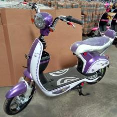 Sunrace Sepeda Listrik Sunny 350W - 48V 12A