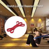 Beli Tomshoo 208 Cm Latihan Lingkaran Band Berhenti Membantu Band Powerlifting Bodybuilding Resistensi Peregangan Yoga Membantu Mobilitas Band Latihan Kebugaran For Pria And Wanita Internasional Secara Angsuran