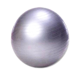 Harga Whiz Gym Ball Bola Fitness Diameter 75 Silver Online Indonesia