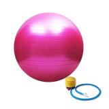 Beli Yoga Ball Harga Gila Pink Yoga Accessories Dengan Harga Terjangkau
