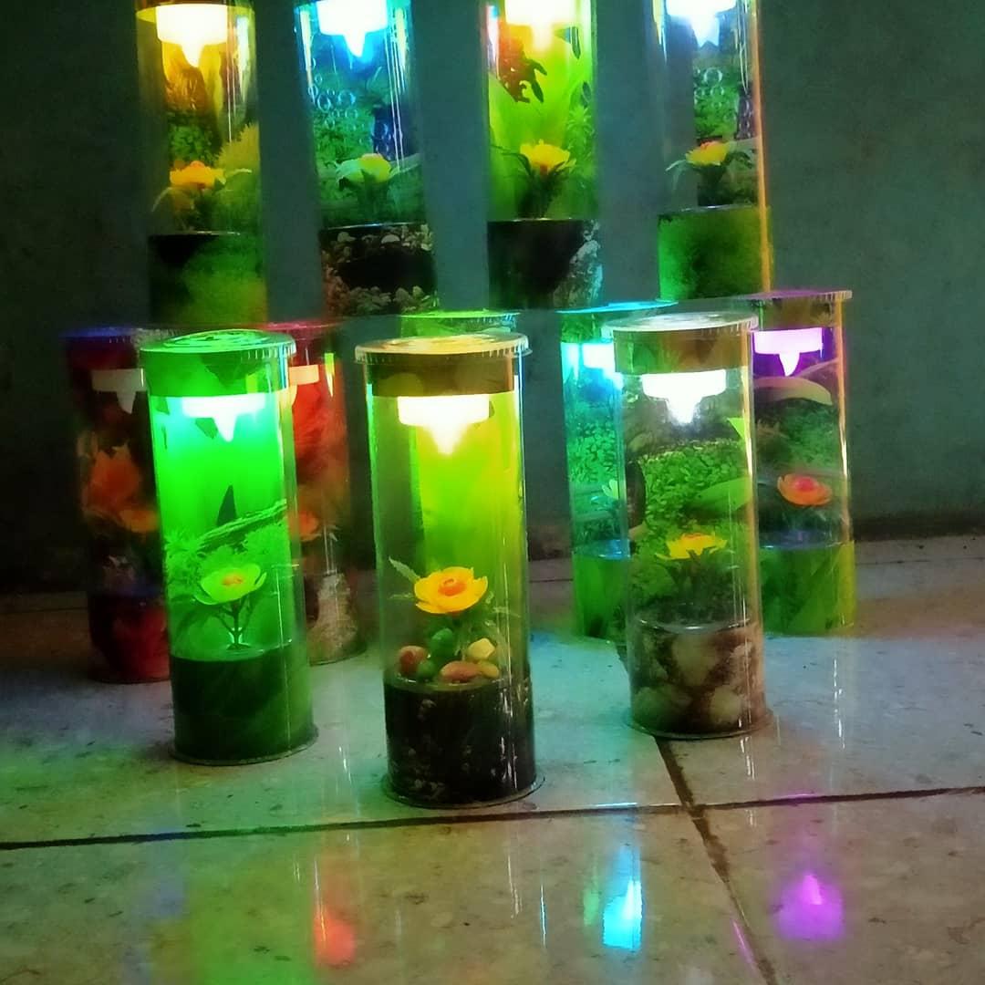 Promo Aquarium Mini Tabung Plus Lampu Untuk Ikan Cupang Lazada Indonesia