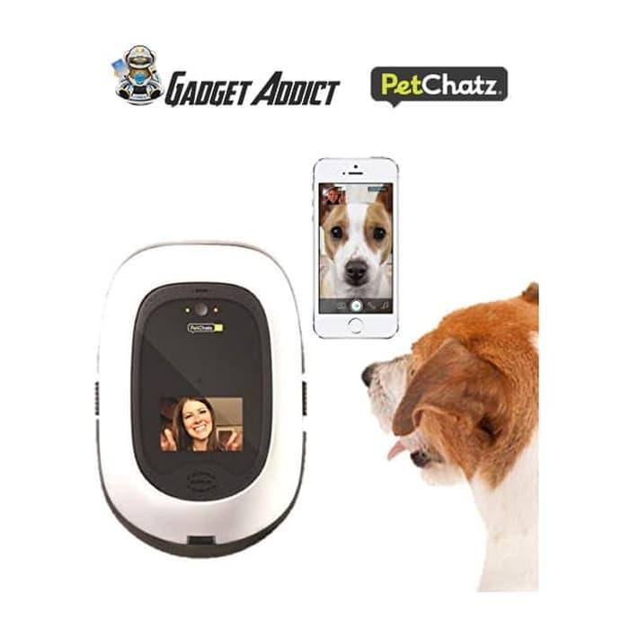 Petchatz Hd Pet Camera - Kamera Cctv Hewan By Gadget_addict.