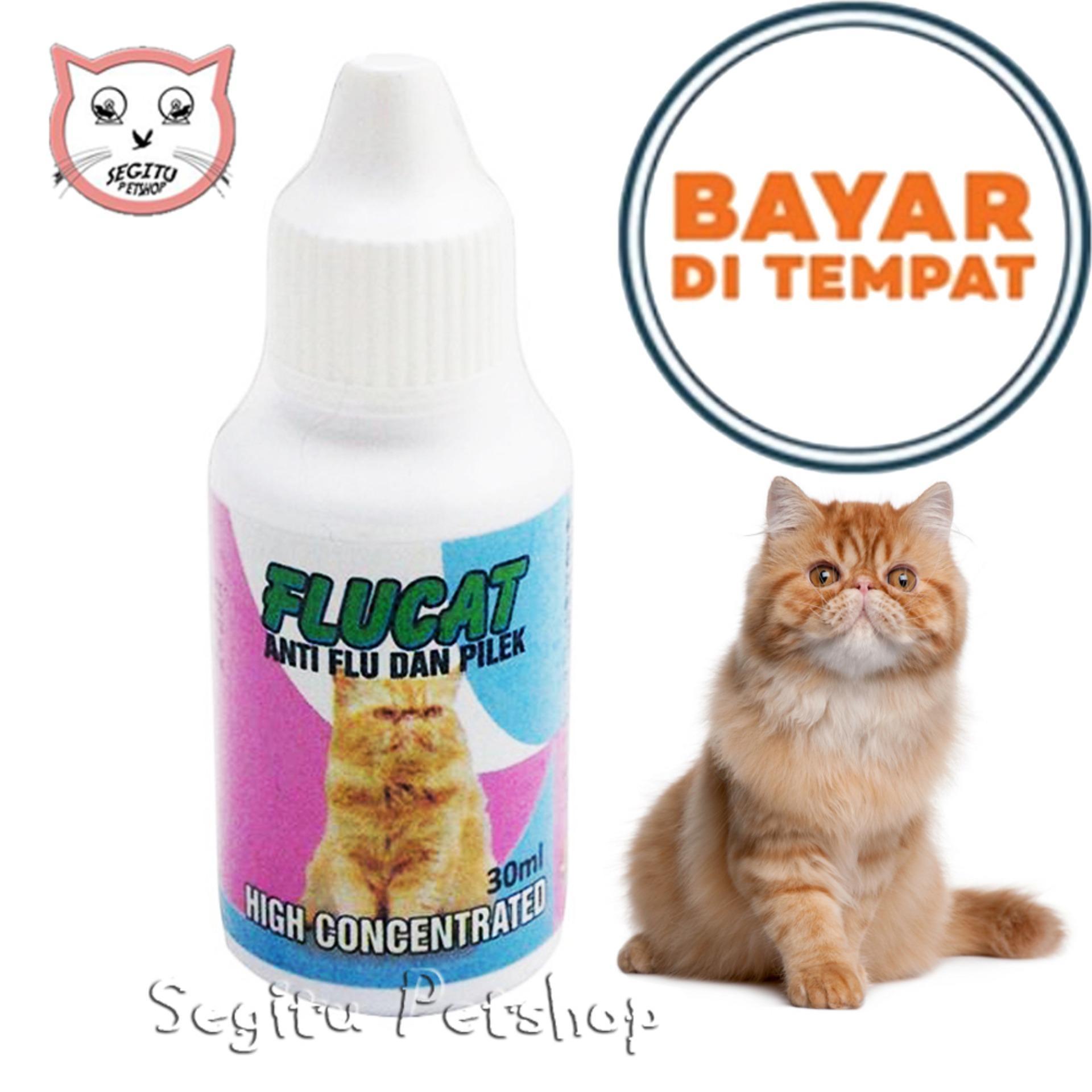 Obat Flu Dan Pilek Untuk Kucing Kitten Dan Dewasa - Flucat