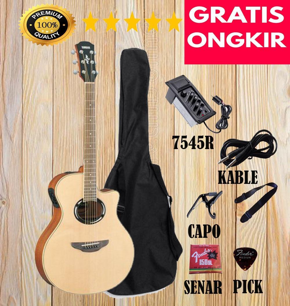 Gitar Akustik APX500lI Custom Natural