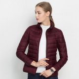 Beli 16 Warna Baru Wanita Ultra Light Duck Down Jaket Plus Women S Overcoat Ukuran Besar Ringan Mantel Jaket Burgundy Intl Online
