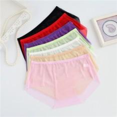 6 Pcs/lot Transparan Penuh Wanita Super Seksi Pakaian Dalam L Xl 3XL Plus Ukuran Celana Dalam Wanita Briefs Pinggang Tengah-Internasional