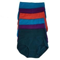 Spesifikasi Aily Celana Dalam Wanita Semi Korset 1828 Multicolour Aily