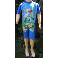 Jual Baju Renang Anak Karakter Brdp K010Sd