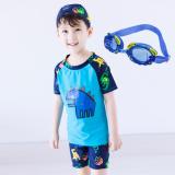 Jual Baju Renang Model Terpisah Balita Anak Kecil Anak Besar Dinosaurus Biru Dengan Topi Kacamata Branded Original