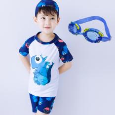 Toko Baju Renang Model Terpisah Balita Anak Kecil Anak Besar Dinosaurus Putih Dengan Topi Kacamata Oem Online