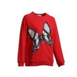 Beli Carvil Swift Women S Sweater Red Murah