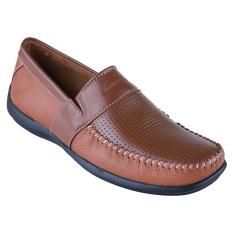Dimana Beli Carvil Wilson Man Sepatu Coral Brown Carvil