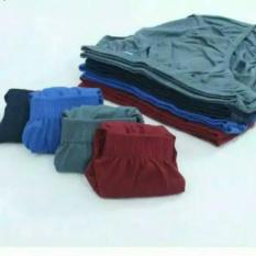 Celana Dalam -CD anak  anak COWOK  Umur 5- 10 tahun - 20 pcs