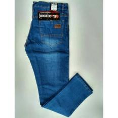 Celana Jeans Panjang Jeans Skinny Jeans Bioblit Jeans Pensil