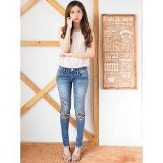 Celana Jeans Wanita Skinny Ripped Jeans Net Ripped No 3 Ancienstore Diskon 40