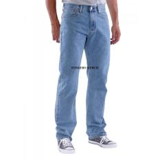 Celana Jeans Standar Regular Pria - Bioblitz