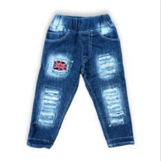 Celana Panjang Jeans  Ripped Untuk Anak