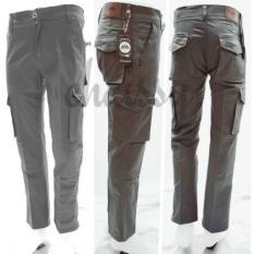 Celana Panjang PDL Cargo Pria Cowok 28 - 42