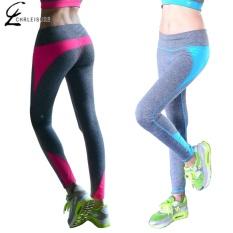 Beli Chrleisure 4 Warna S Xl Legging Wanita Model Slim Warna Candy Legging Spandex Stretch Legging Wanita Rose Intl Yang Bagus