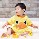 Jual Dessan Animal Duck Baju Setelan Anak Ori