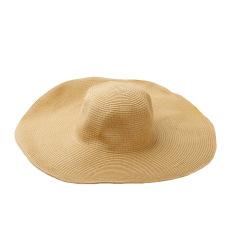 Harga Musim Panas Fashion Lucu Yang Dapat Membuat Orang Yang Melihatnya Tertawa Terbahak Bahak Atau Justru Kesal Karena Merasa Wanita Jerami Topi Bertepi Lebar Topi Pantai Lebar Lipat Topi Matahari Coklat Yang Bagus