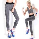 Toko Fashion Ladies Olahraga Menjalankan Celana Yoga Wanita Elastis Kebugaran Legging Peregangan Oem