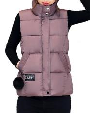 Harga Gamiss Musim Dingin Wanita Berdiri Kerah Zip Up Front Gilet Berlapis Empuk Jaket Rompi With Pocket Pink Online Tiongkok