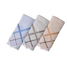 Gudang Fashion - Sapu Tangan Cantik Isi 3Pcs - Multi Color