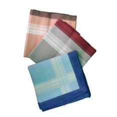 Gudang Fashion - Sapu Tangan Pria - Multi Colour