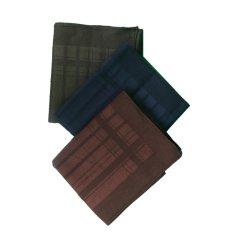 Gudang Fashion - Sapu Tangan Pria Rapih - Multi Colour