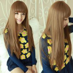 HAIRCLIP SMOOTHING 60CM LIGHT BROWN