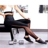 Katalog Hot Fashion Workout Training Tinggi Pinggang Mesh Legging Menjalankan Gaya Sporty Fitness Women Sport Slim Wanita Yoga Celana Harajuku Summer Black S*xy Legging Push Up Fitness Gym Pakaian Int S Intl Terbaru