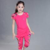 Spesifikasi Setelan Anak Perempuan Usia Sekolah Dua Potong Pakaian Olahraga Lengan Pendek Mawar Merah Mawar Merah Lengkap Dengan Harga