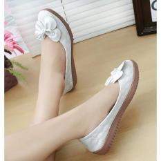 Jual Sepatu Wanita Flat Shoes Guci Bunga SE01 - Aneka JKT  Lazada