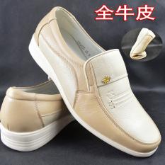 Kasual Kulit Putih Pria Sepatu Putih Bisnis Her Kasual (Gambar Warna)