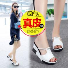 Harga Kasual Kulit Siswa Mulut Ikan Sepatu Sandal Wanita Sendal Z11 Putih Sepatu Wanita Sandal Wanita Oem Tiongkok