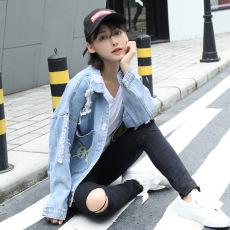 Pakaian Jeans Wanita Bordiran Versi Korea