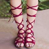 Beli Moonar Baru Mode Musim Panas Wanita Kaki Bungkus Renda Up Gladiator Sandal Merah Intl Terbaru