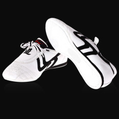 Spesifikasi Baru Unisex Taekwondo Karate Kung Fu Tai Chi Pelatihan Sepatu Sneakers Internasional Yang Bagus